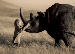 Latest Statistics On Rhino Poaching
